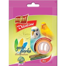Vitaline dla papużki falistej Gęste piórka
