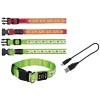 Obroża taśmowa dla psa świecąca LED USB