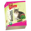 Vitaherbal Trawa dla kota w kartonie